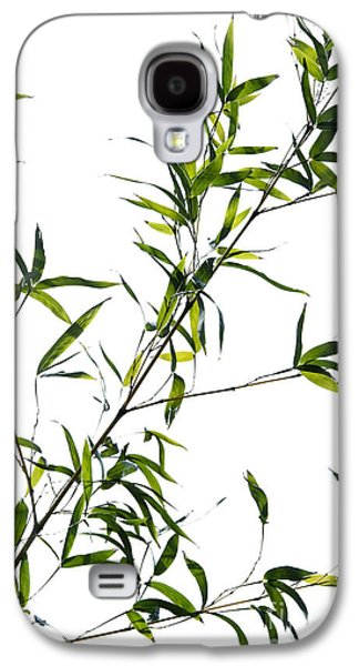 Bamboo Galaxy S4 Cases - Bamboo Leaves Galaxy S4 Case by Tim Gainey