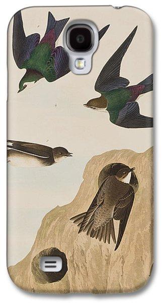 Bank Swallows Galaxy S4 Case by John James Audubon