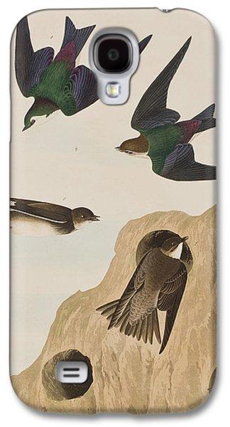 Swallow Galaxy S4 Cases - Bank Swallows Galaxy S4 Case by John James Audubon