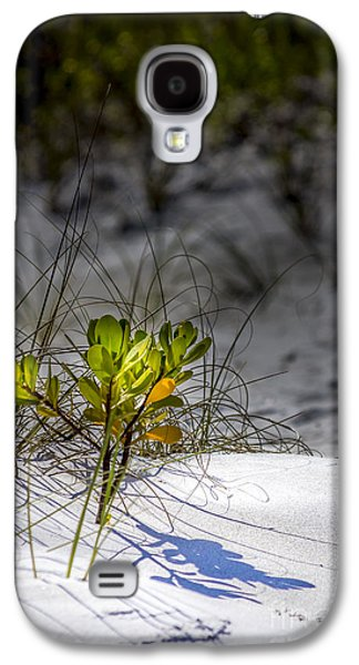 Waterscape Galaxy S4 Cases - Beach Life Galaxy S4 Case by Marvin Spates