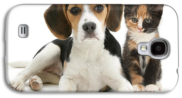 Domesticated Animals Galaxy S4 Cases - Beagle And Calico Cat Galaxy S4 Case by Mark Taylor