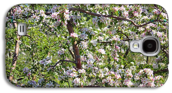 Cherry Blossoms Galaxy S4 Cases - Beautiful Blossoms - Digital Art Galaxy S4 Case by Carol Groenen