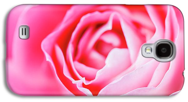 Beautiful Pink Rose Closeup Galaxy S4 Case by Vishwanath Bhat