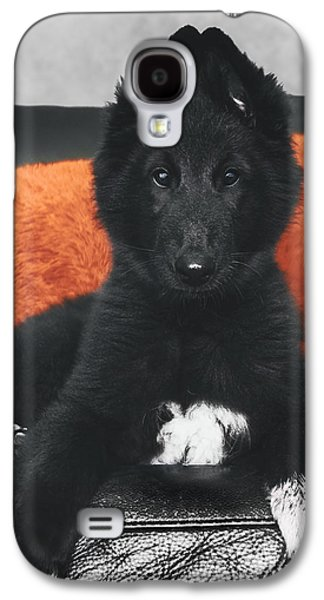 Working Dog Galaxy S4 Cases - Belgian Sheepdog Puppy Galaxy S4 Case by Wolf Shadow  Photography