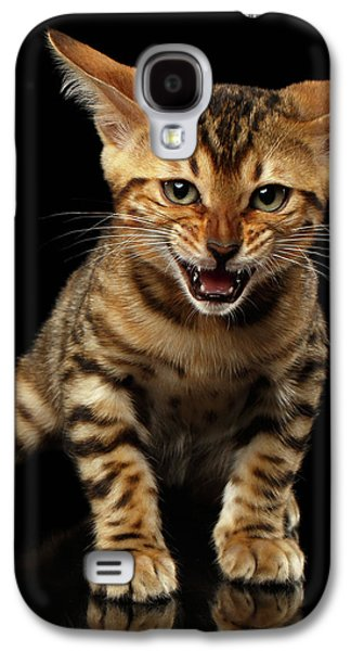 Bengal Kitty Stands And Hissing On Black Galaxy S4 Case by Sergey Taran