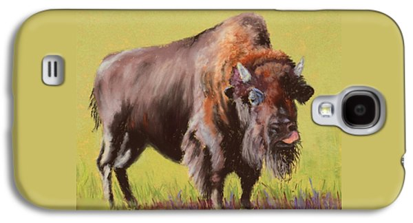 Bison Pastels Galaxy S4 Cases - Big Boy Galaxy S4 Case by Nancy Jolley