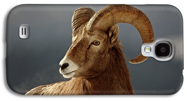 Grazing Snow Galaxy S4 Cases - Bighorn Sheep in winter Galaxy S4 Case by Mark Duffy