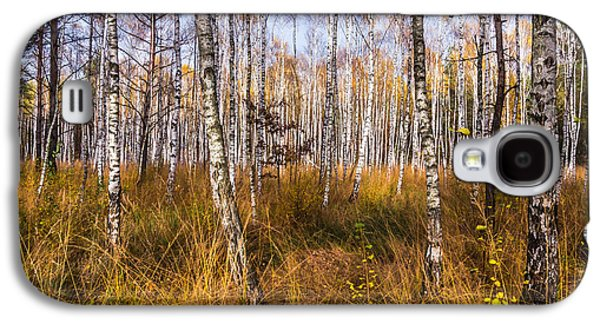 Landscapes Photographs Galaxy S4 Cases - Birches and Grass Galaxy S4 Case by Dmytro Korol