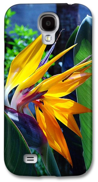 Florida Flowers Photographs Galaxy S4 Cases - Bird of Paradise Galaxy S4 Case by Susanne Van Hulst