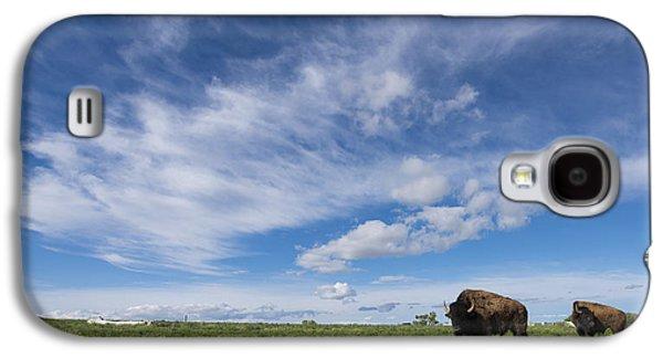 Bison Galaxy S4 Cases - Bison Galaxy S4 Case by Noah Bryant