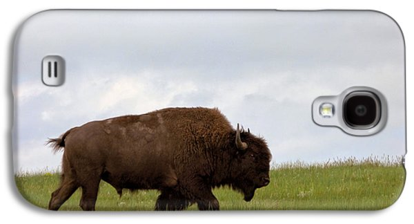 American Bison Galaxy S4 Cases - Bison on the American Prairie Galaxy S4 Case by Olivier Le Queinec