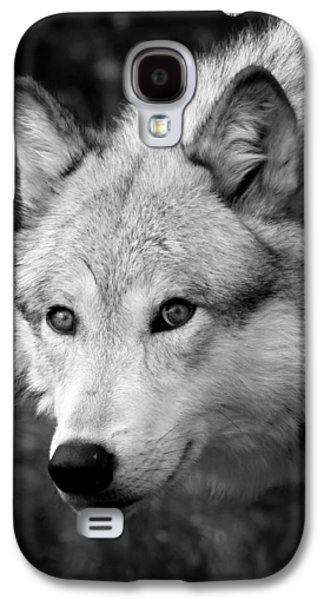 Preditor Galaxy S4 Cases - Black and White Wolf Galaxy S4 Case by Steve McKinzie