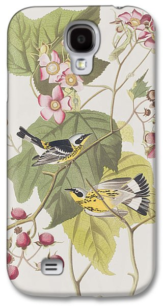 Black And Yellow Warblers Galaxy S4 Case by John James Audubon