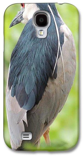 Black Crowned Night Heron Galaxy S4 Case by Todd Sherlock
