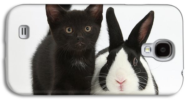 House Pet Galaxy S4 Cases - Black Kitten And Dutch Rabbit Galaxy S4 Case by Mark Taylor