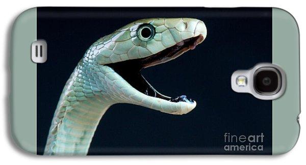 Black Mamba Galaxy S4 Cases - Black mamba Galaxy S4 Case by Reptiles4all