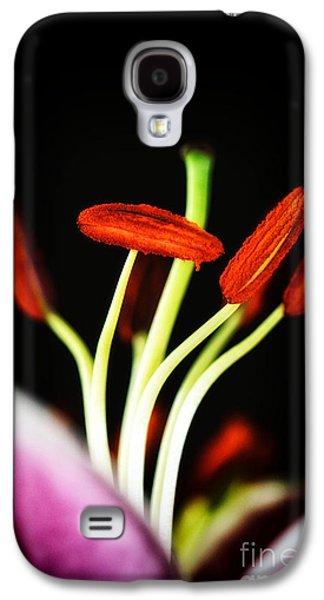 Landscapes Photographs Galaxy S4 Cases - Black with colors Galaxy S4 Case by SK Pfphotography