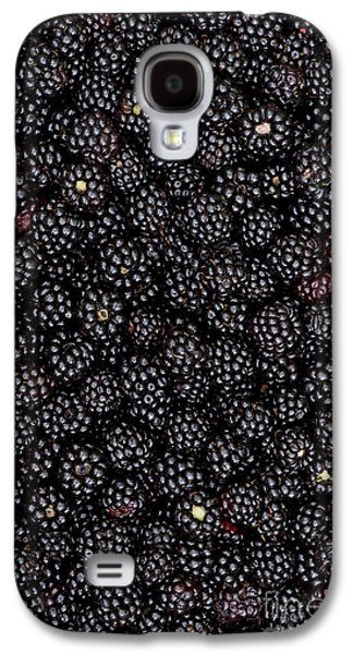 Rosaceae Galaxy S4 Cases - Blackberry Harvest  Galaxy S4 Case by Tim Gainey