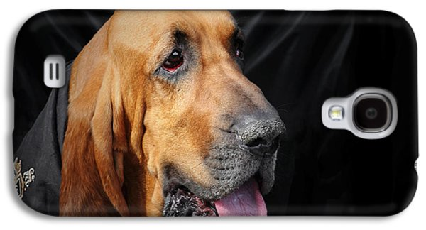 Best Friend Photographs Galaxy S4 Cases - Bloodhound - Governed by a world of scents Galaxy S4 Case by Christine Till