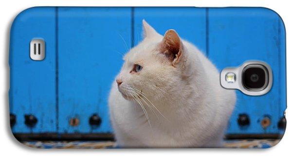 Rabat Photographs Galaxy S4 Cases - Blue Door White Cat Galaxy S4 Case by Ramona Johnston
