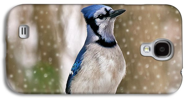 Blue For You Galaxy S4 Case by Evelina Kremsdorf