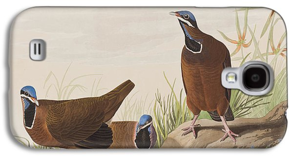 Blue Headed Pigeon Galaxy S4 Case by John James Audubon
