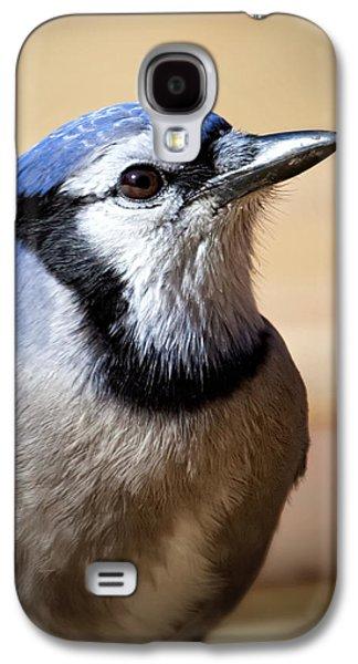 Birds Galaxy S4 Cases - Blue Jay Portrait Galaxy S4 Case by Al  Mueller
