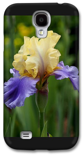 Blue Yellow Iris Germanica Galaxy S4 Case by Rona Black