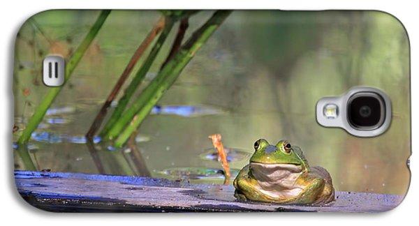 Green Galaxy S4 Cases - Boardwalk Galaxy S4 Case by Donna Kennedy