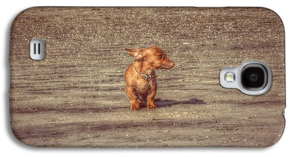 Dog Trots Galaxy S4 Cases - Bob The Boss Galaxy S4 Case by Leah McPhail