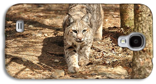 Bobcat Galaxy S4 Case by Terri McLellan