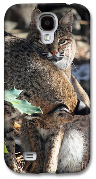 Bobcats Galaxy S4 Case by Julian Bralley