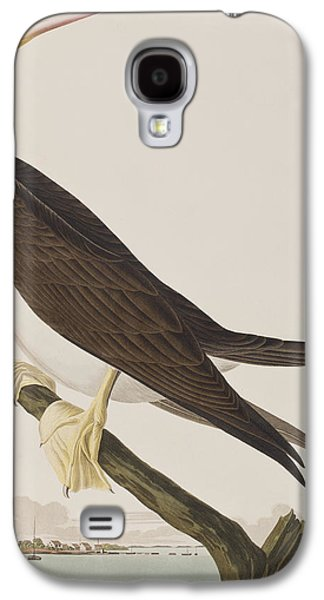 Booby Gannet   Galaxy S4 Case by John James Audubon