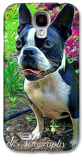 Puppies Digital Art Galaxy S4 Cases - Boston Terrier Galaxy S4 Case by Jen  Brooks Art