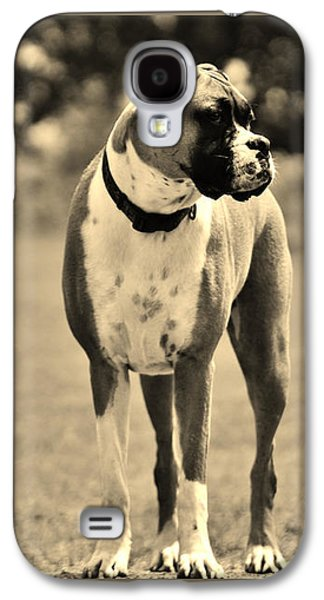 Boxer Galaxy S4 Cases - Boxer Galaxy S4 Case by Bonnie Barker