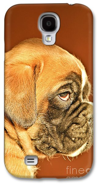 Boxer Galaxy S4 Cases - Boxer Dog Puppy Galaxy S4 Case by Dan Radi