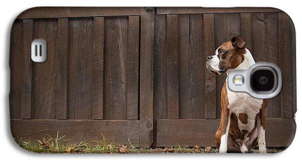 Boxer Galaxy S4 Cases - Boxer Galaxy S4 Case by Joye Ardyn Durham