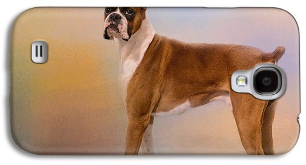 Boxer Galaxy S4 Cases - Boxer On A Beautiful Day Galaxy S4 Case by Jai Johnson
