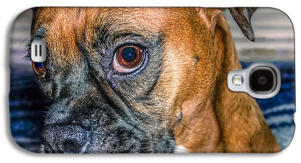 Boxer Digital Art Galaxy S4 Cases - Boxer Portrait Galaxy S4 Case by Rob Sellers