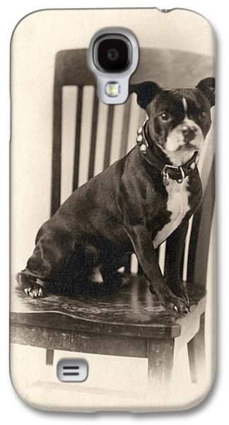 Boxer Dog Galaxy S4 Cases - Boxer Sitting on a Chair Galaxy S4 Case by Unknown