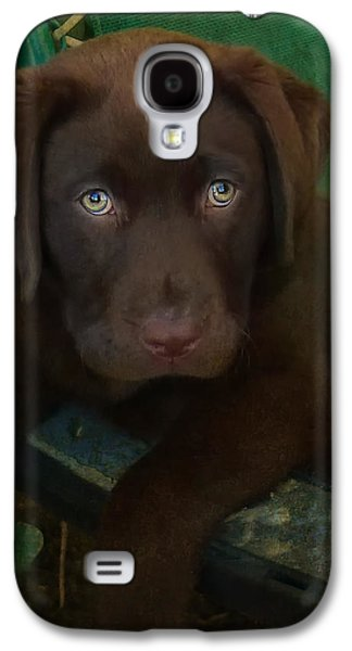 Puppies Galaxy S4 Cases - Bright Eyes Galaxy S4 Case by Larry Marshall