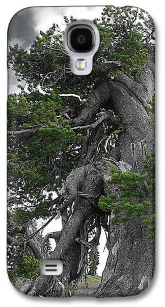 Survivor Art Galaxy S4 Cases - Bristlecone Pine tree on the rim of Crater Lake - Oregon Galaxy S4 Case by Christine Till