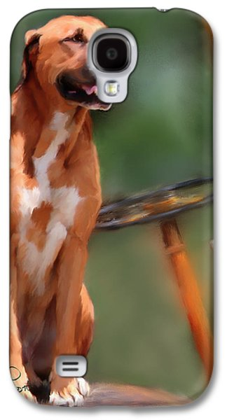 Boxer Galaxy S4 Cases - Buck Galaxy S4 Case by Colleen Taylor