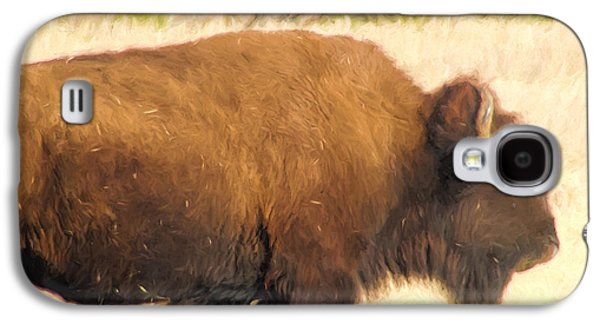 Bison Digital Galaxy S4 Cases - Buffalo 2 Galaxy S4 Case by Cathy Anderson