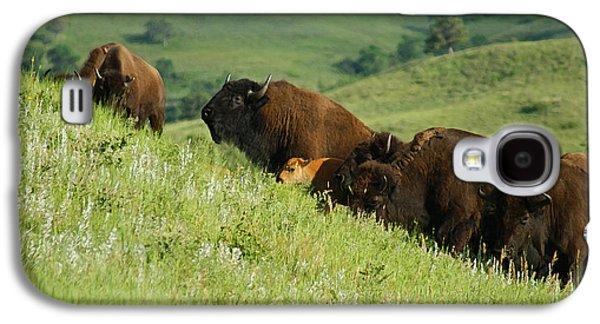 Bison Mixed Media Galaxy S4 Cases - Buffalo on Hillside Galaxy S4 Case by Ernie Echols