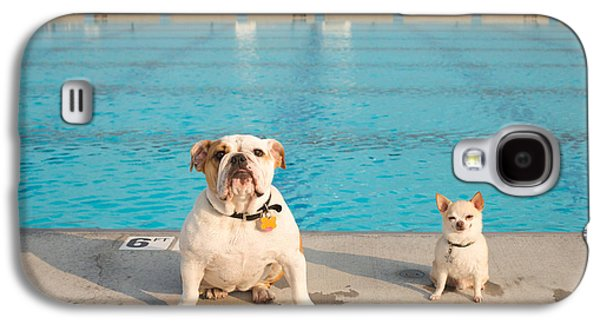 Dog Galaxy S4 Cases - Bulldog And Chihuahua By The Pool Galaxy S4 Case by Gillham Studios