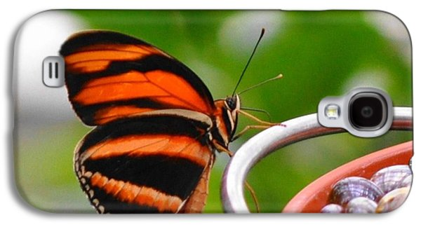 Marble Eye Galaxy S4 Cases - Butterflies Are Blooming Galaxy S4 Case by Debra  Miller