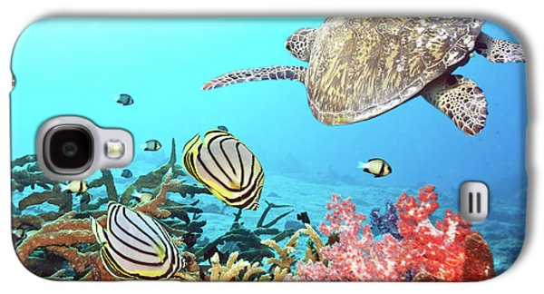 Nature Photographs Galaxy S4 Cases - Butterflyfishes and turtle Galaxy S4 Case by MotHaiBaPhoto Prints