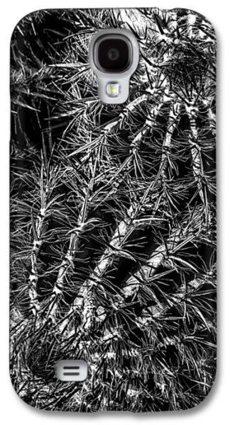 Photographs Galaxy S4 Cases - Cactus 02 Galaxy S4 Case by Edgar Laureano