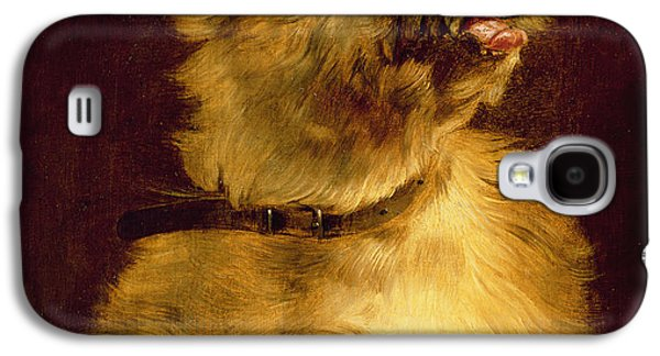Ledge Galaxy S4 Cases - Cairn Terrier   Galaxy S4 Case by George Earl